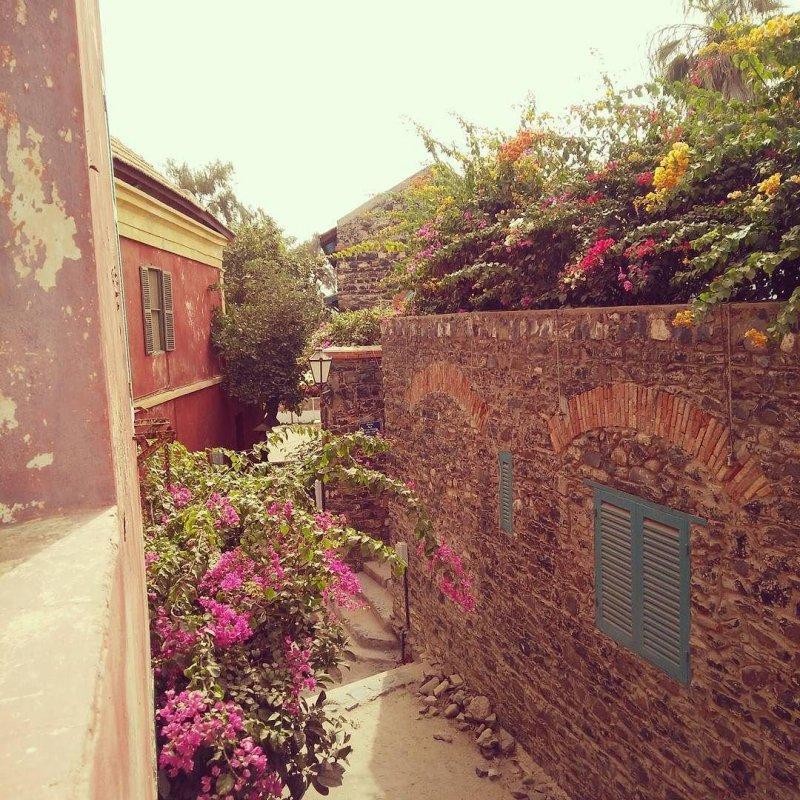 Good morning, Gorée! #hackerbeach